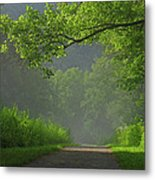 A Touch Of Green Metal Print