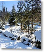 A Touch Of Snow Metal Print