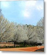 A Touch Of Spring Metal Print