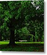 A Tree And A Bench Metal Print