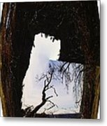 A Tree In A Square Abstract Metal Print