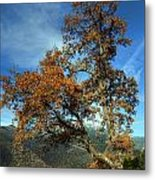 A Tree In Arcadia - Greece Metal Print
