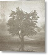 A Tree In The Fog 3 Metal Print