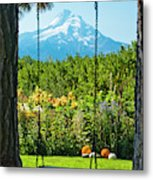 A Tree Swing Is Seen On A Summer Day Metal Print
