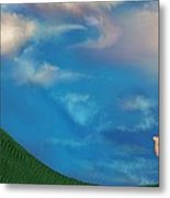 A Twin's Perspective Metal Print