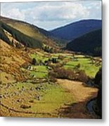 Natural Beauty In Wicklow, Ireland Metal Print