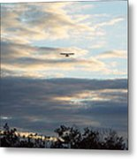 A View From Above Metal Print