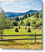A View From Carpathians Metal Print