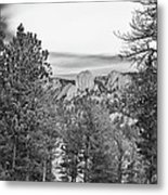 A View From Estes Park Metal Print