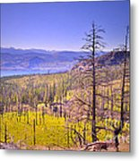 A View From Okanagan Mountain Metal Print
