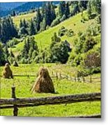 A View From The Carpathians Metal Print