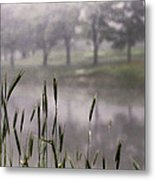 A View In The Mist Metal Print