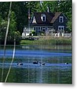 A View Of Some Ducks Enjoying Round Pond At The United States Military Academy Metal Print