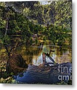 A View Of The Nature Center Merged Image Metal Print