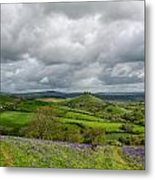 A View To Colmer's Hill Metal Print