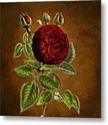 A Vintage Rose Wonder Metal Print