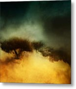 A Walk In The Clouds Metal Print by Shevon Johnson