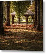 A Walk In The Park Metal Print by Cindy Rubin