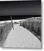 A Walk To The Sea Metal Print