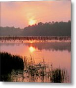 A Wetlands Sunrise Metal Print by JC Findley