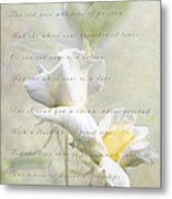 A White Rose Metal Print