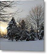 A White Winter's Morning Metal Print