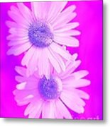 A Whiter Shade Of Pale Metal Print