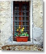 A Window In Tuscany Metal Print by Mel Steinhauer