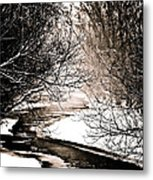 A Winter Stream 2 Metal Print