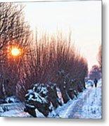 A Winter Wonderland Walk Metal Print