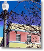 A Winters Day In Florida Metal Print
