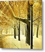 A Winter's Night Metal Print by Marty Koch