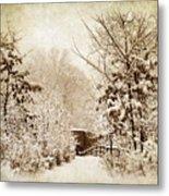 A Winter's Path Metal Print