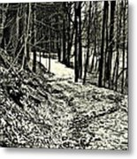 A Winter's Trail Metal Print