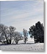 A Wintery Day Metal Print
