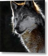 A Wolf 2 Digital Art  Metal Print