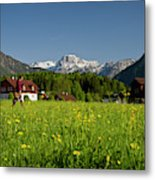 A Woman Walks Through An Alpine Meadow Metal Print