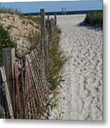 A Wonderful Beachday On Cape Cod Metal Print