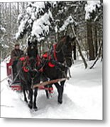 A Wonderful Day For A Sleigh Ride Metal Print