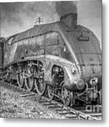 A4 Class 60024 Kingfisher Metal Print