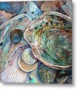 Abalone Grouping Metal Print