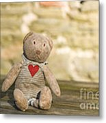 Abandoned Bear Metal Print