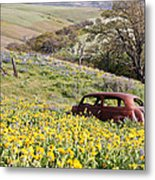Abandoned Ford Buried In Wildflowers Metal Print
