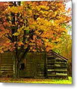 Abandoned In The Country Metal Print