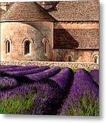 Abbey Lavender Metal Print
