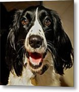 Abby's Sweet Smiling Face Metal Print