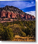 Above It All Metal Print