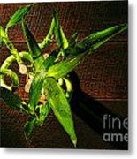 Above The Bamboo Metal Print by Olivier Le Queinec