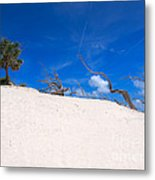Above The Dunes Metal Print