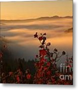 Above The Mists Metal Print
